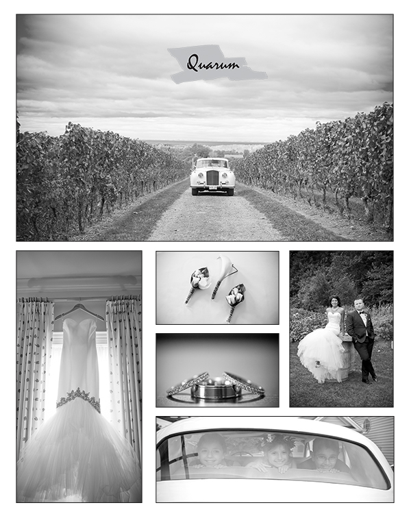 Vintage Vineyard Weddings by Quarum Toronto